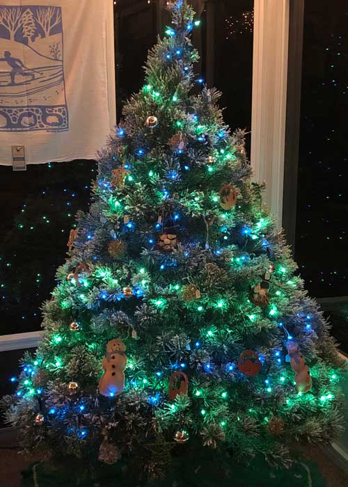 Lightly flocked tree at night with lights