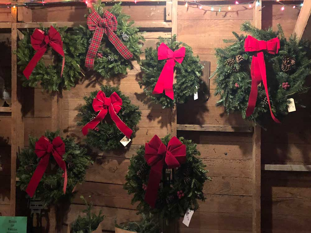 Wreaths of various sizes hanging on the wall